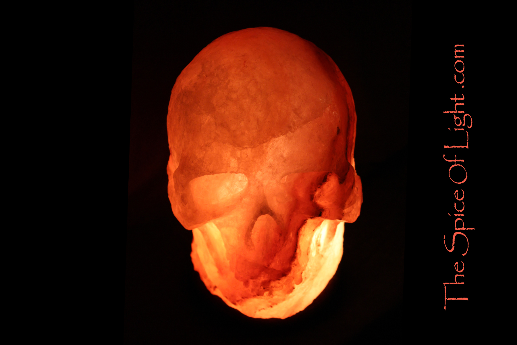 1 skull large himalayan salt lamp the spice of light for Large salt rock lamp